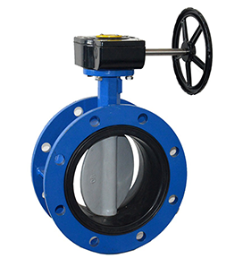 Butterfly Valve Double Flange